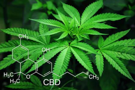 Legalización de drogas