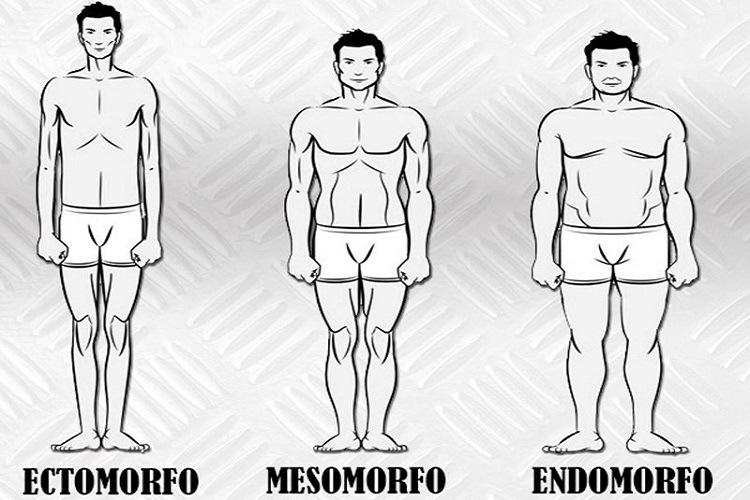 Tipos de cuerpo: ectomorfo, endomorfo y mesomorfo. ¿Sabes cuál es el tuyo?