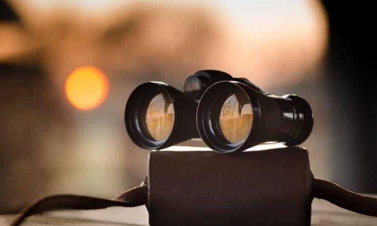 ¿Cómo escoger el prismático ideal? Tipos y usos