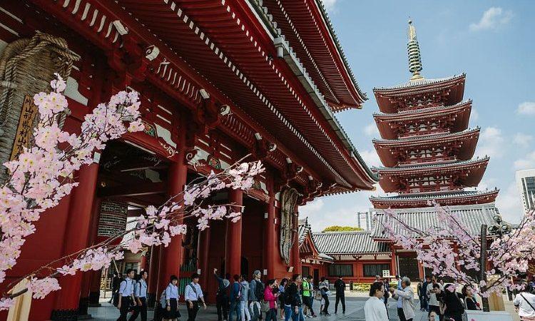 Qué ver y hacer en Tokio en 3 días
