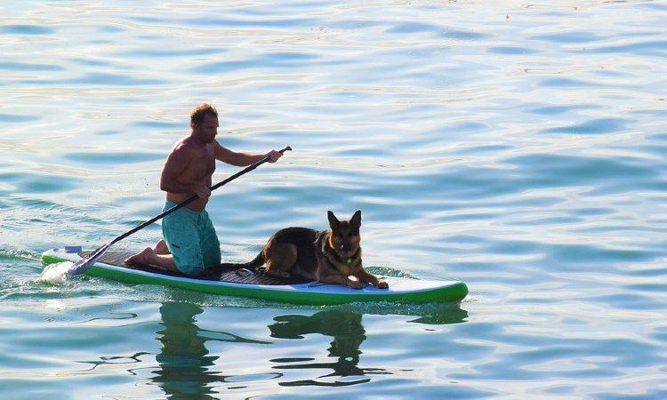 Beneficios de los deportes acuáticos en la salud mental