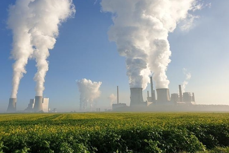 Consultoría medioambiente, un plus para las empresas