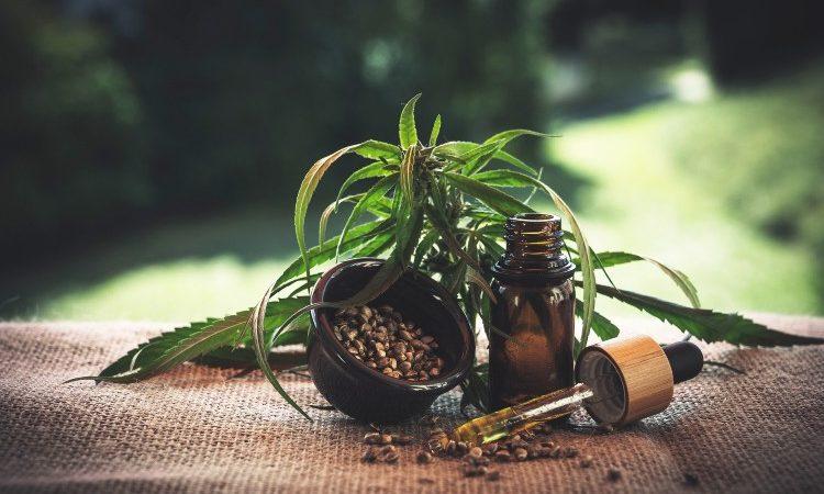 El CBD: remedio natural con multitud de propiedades beneficiosas